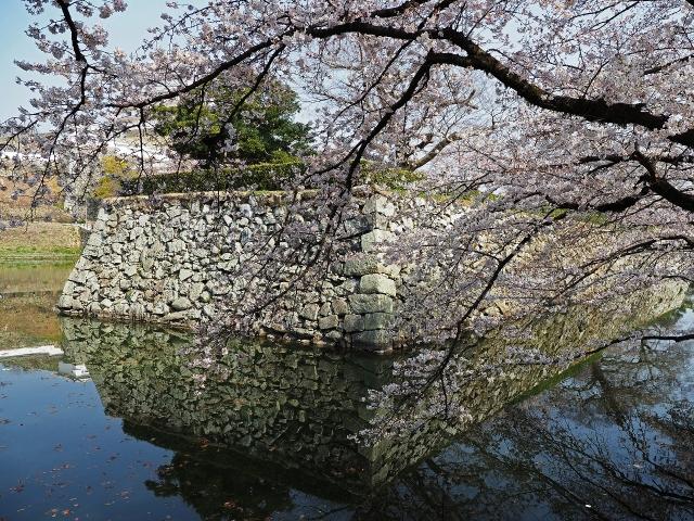 190406姫路城5_映