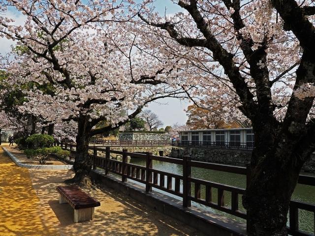 190406姫路城12