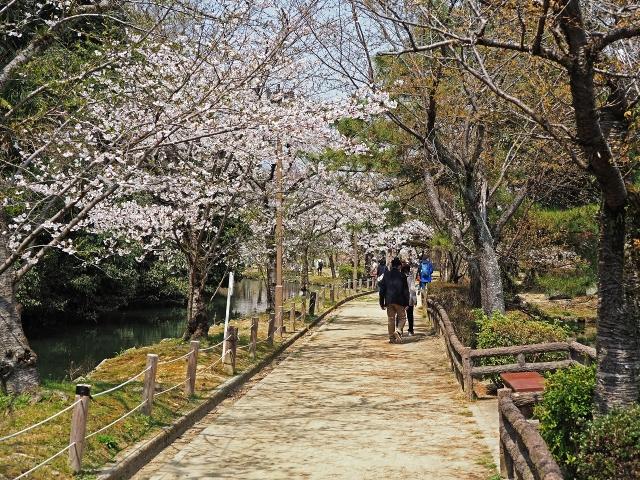 190406姫路城15