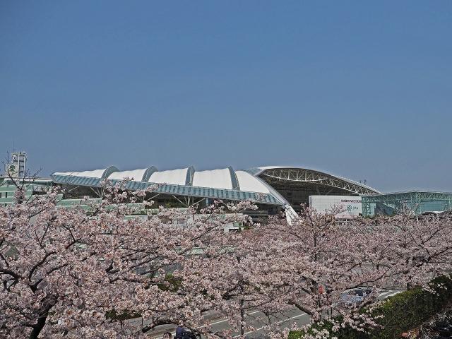 190407阪神競馬場1