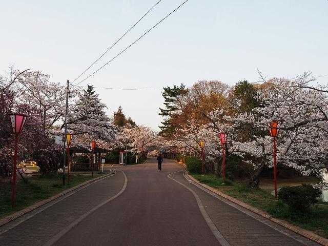 190407日岡山公園1