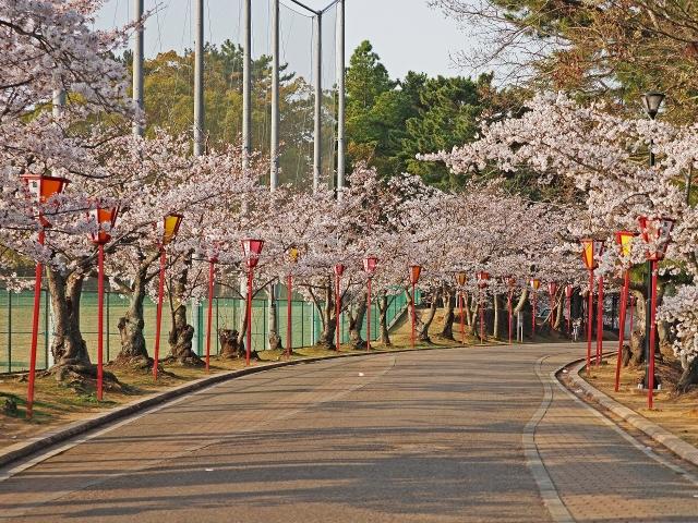 190407日岡山公園3