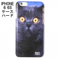 British Cat phone case iphone 6 (3)1