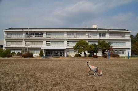 20190226田井小学校11