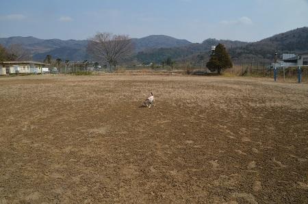 20190226田井小学校16