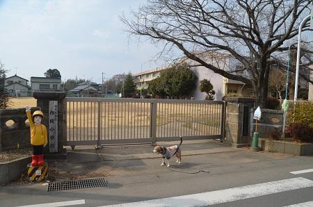 20190226作岡小学校 01