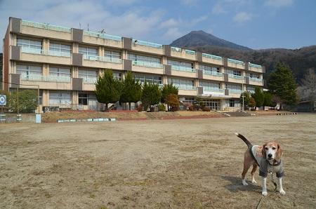 20190226筑波小学校07