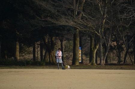 20190226洞峰公園14