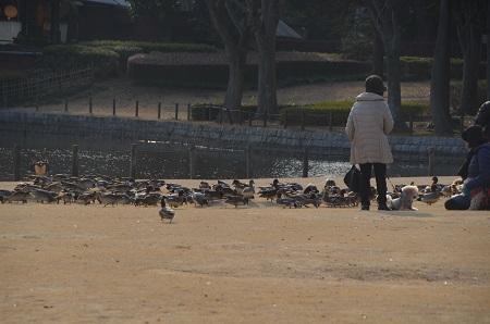 20190226洞峰公園26