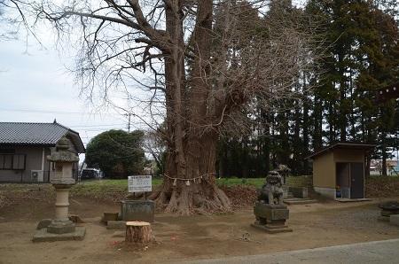 20190227郡本八幡神社24