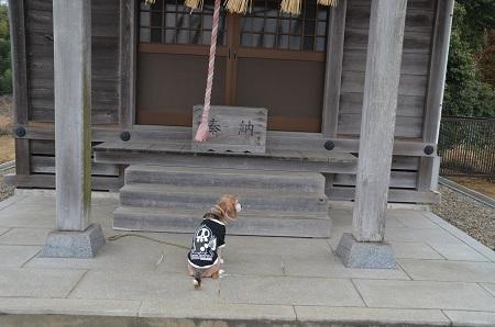 20190227小田部熊野神社14