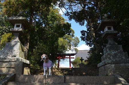 20190309松尾神社06
