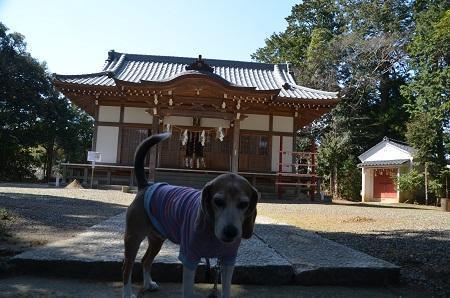 20190309御宿春日神社11