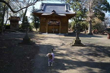 20190309六所神社07