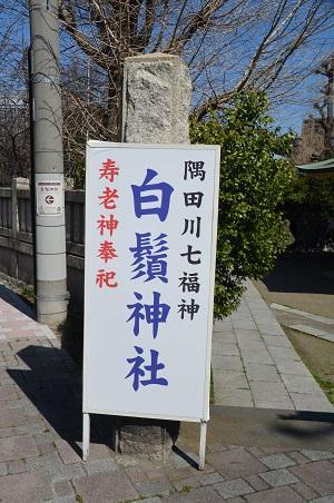 20190314東向島白髭神社01