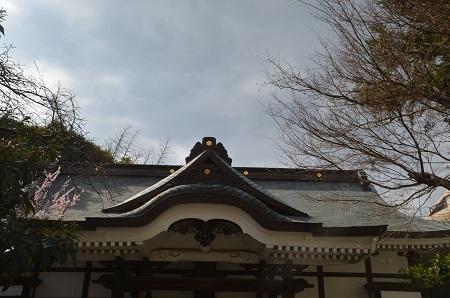 20190314鳥越神社12
