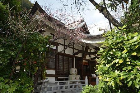 20190314鳥越神社14