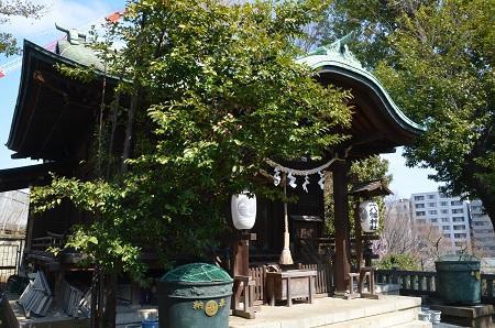 20190317正八幡神社08