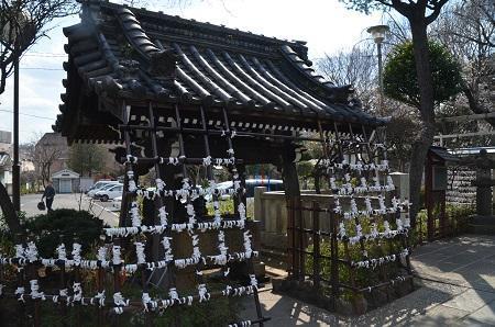 20190317白山神社04