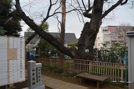 20190317妙義神社25