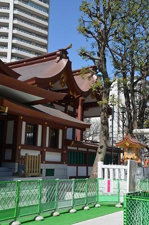 20190318蒲田八幡神社11
