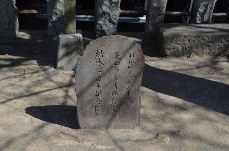 20190318矢口氷川神社16