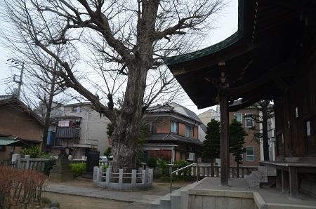 20190329西亀有高木神社20