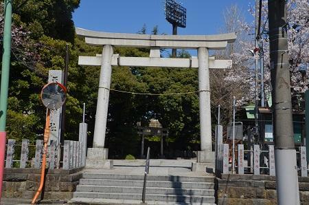 20190404奥戸天祖神社03