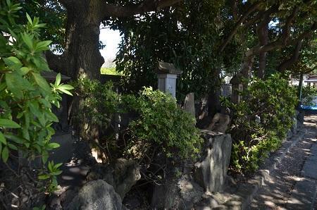 20190404奥戸天祖神社11