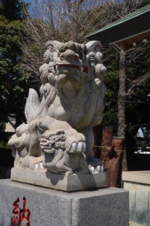 20190404奥戸天祖神社16