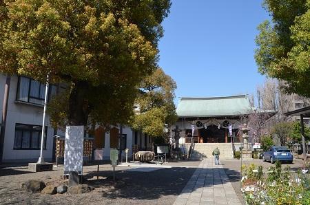20190404亀戸香取神社34