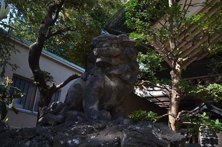20190404亀戸天祖神社13