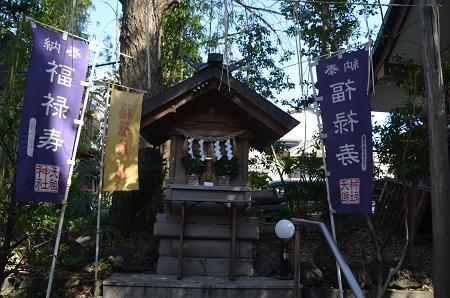 20190404亀戸天祖神社19