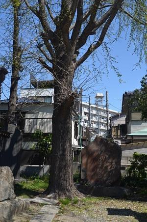 20190413隅田稲荷神社33