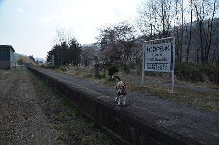 20190422旧・中山宿駅02