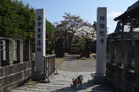 20190422東軍墓地01