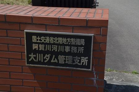 20190423大川ダムの桜04