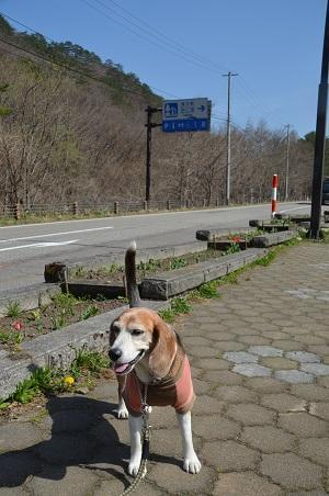20190423道の駅 たじま02