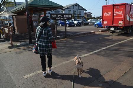 20190422七日町散歩01