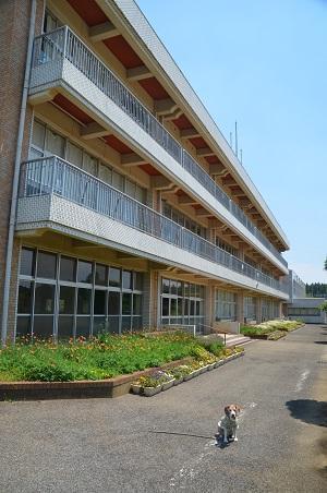 20190511第一山倉小学校11