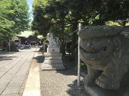 20190526菊田神社07