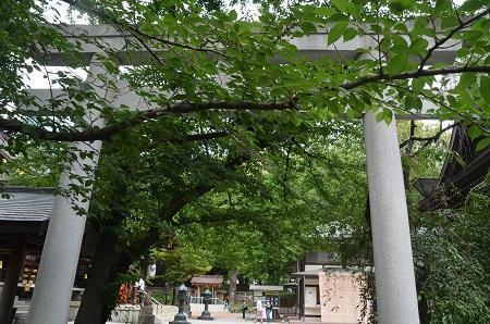20190601熊野神社13