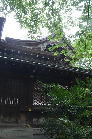 20190601熊野神社19