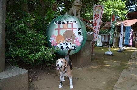 20190606富里香取神社02