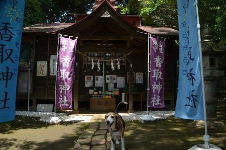 20190606富里香取神社07