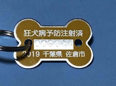 20190606狂犬病予防注射票04