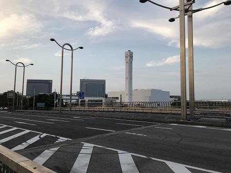 20190606コスモス大橋06