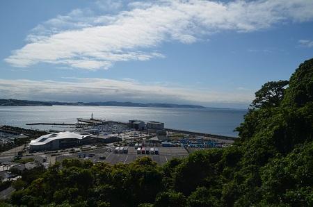 20190611江の島 稚児ヶ淵04