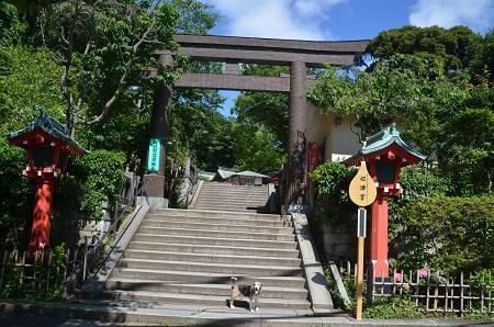 20190611江の島神社18