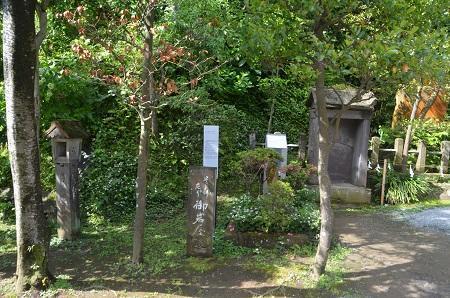 20190611江の島神社26